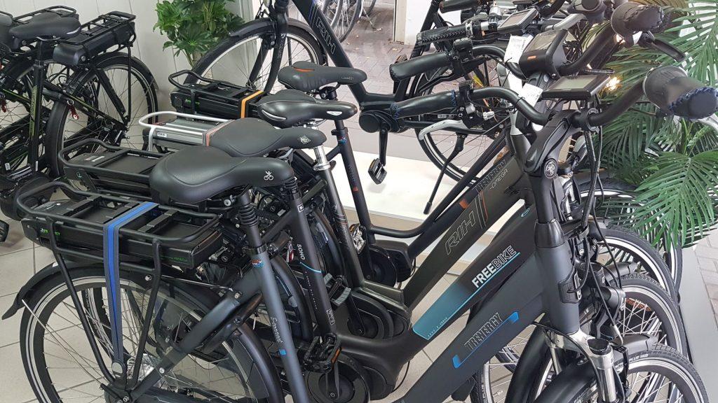 merken elektrische fietsen emmen